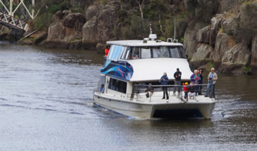Tamar Valley Cruise